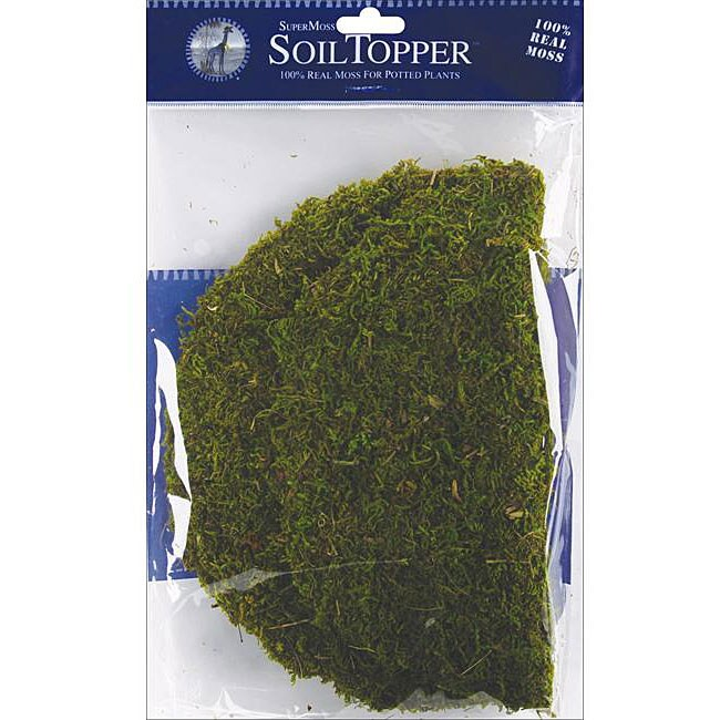 SuperMoss Green Moss Pot Toppers