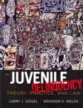 Juvenile Delinquency: Theory, Practice, and Law (Hardcover)