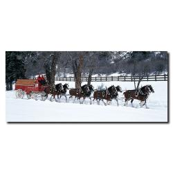 'Clydesdales - in a Snow-covered Field with a Fence' Canvas Art