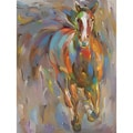 Hooshang Khorasani 'Blaze' Gallery-wrapped Canvas Art