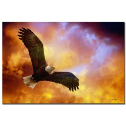 Lois Bryan 'Flight of the Eagle' Canvas Art