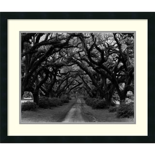 Monte Nagler 'Path in the Oaks 2, Louisiana' Framed Art Print