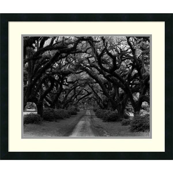 Monte Nagler 'Path in the Oaks #2, Louisiana' Framed Art Print