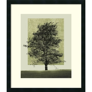 Harold Silverman 'Nature's Shapes II' Framed Art Print