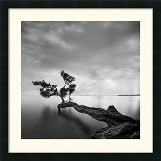 Moises Levy 'Water Tree' Framed Art Print