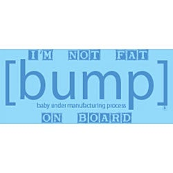 I'm Not Fat [Bump] on Board Maternity Tank Top