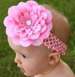 Headbandz Pink Flower and Headband