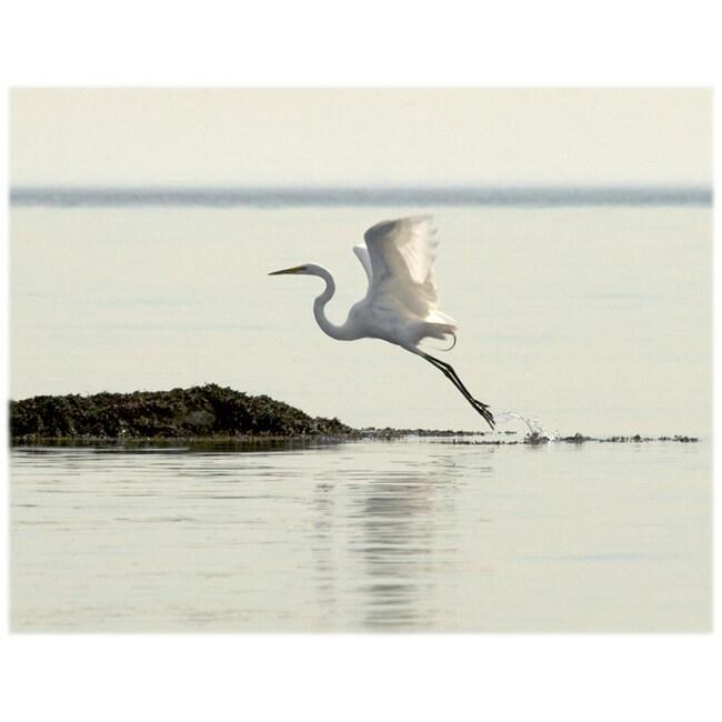 Orange Cat Art Jill M. Davis 'Great Egret Takes Flight' Photo Print