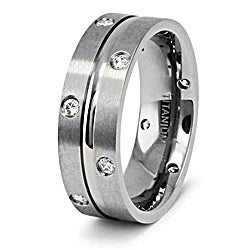 Men's Titanium Cubic Zirconia Double Eternity Ring