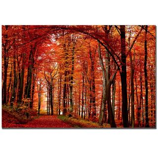 Philippe Sainte-Laudy 'The Red Way' Medium Canvas Art