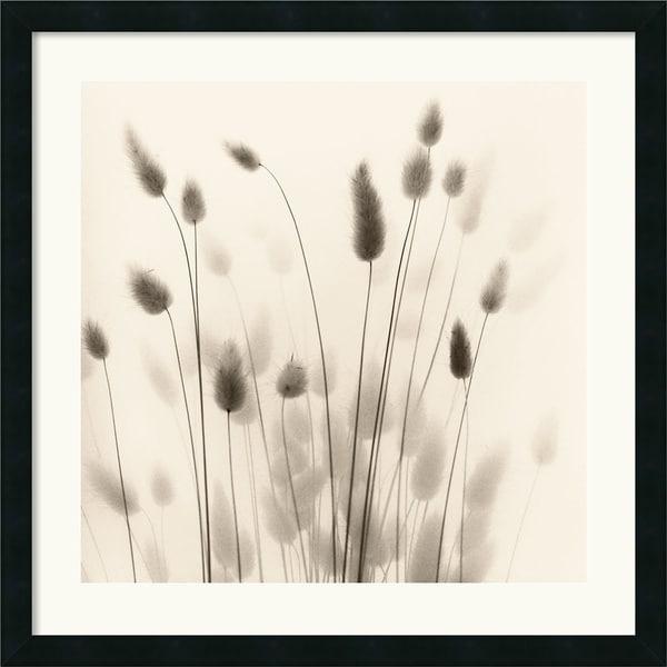 Alan Blaustein 'Italian Tall Grass No. 1' Framed Art Print