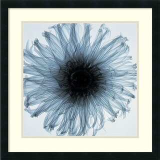 Steven N. Meyers 'Dahlia (blue)' Framed Art Print