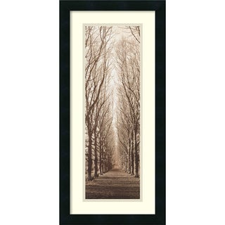 Alan Blaustein 'Poplar Trees' Framed Art Print