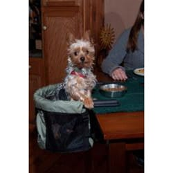 Pet Gear PG2500 Nylon/Plastic-coated Steel Clip-On Pet High Chair