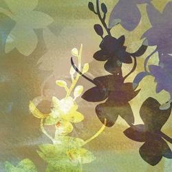 Jan Weiss 'Orchid Shadows III' Large Gallery-Wrapped Canvas Art