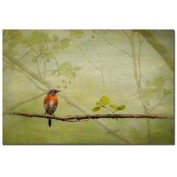 Lois Bryan 'Bluebird in Spring' Canvas Art