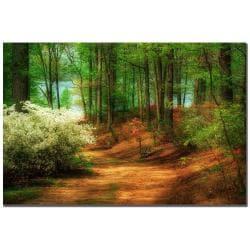 Lois Bryan 'Favorite Path' Canvas Art