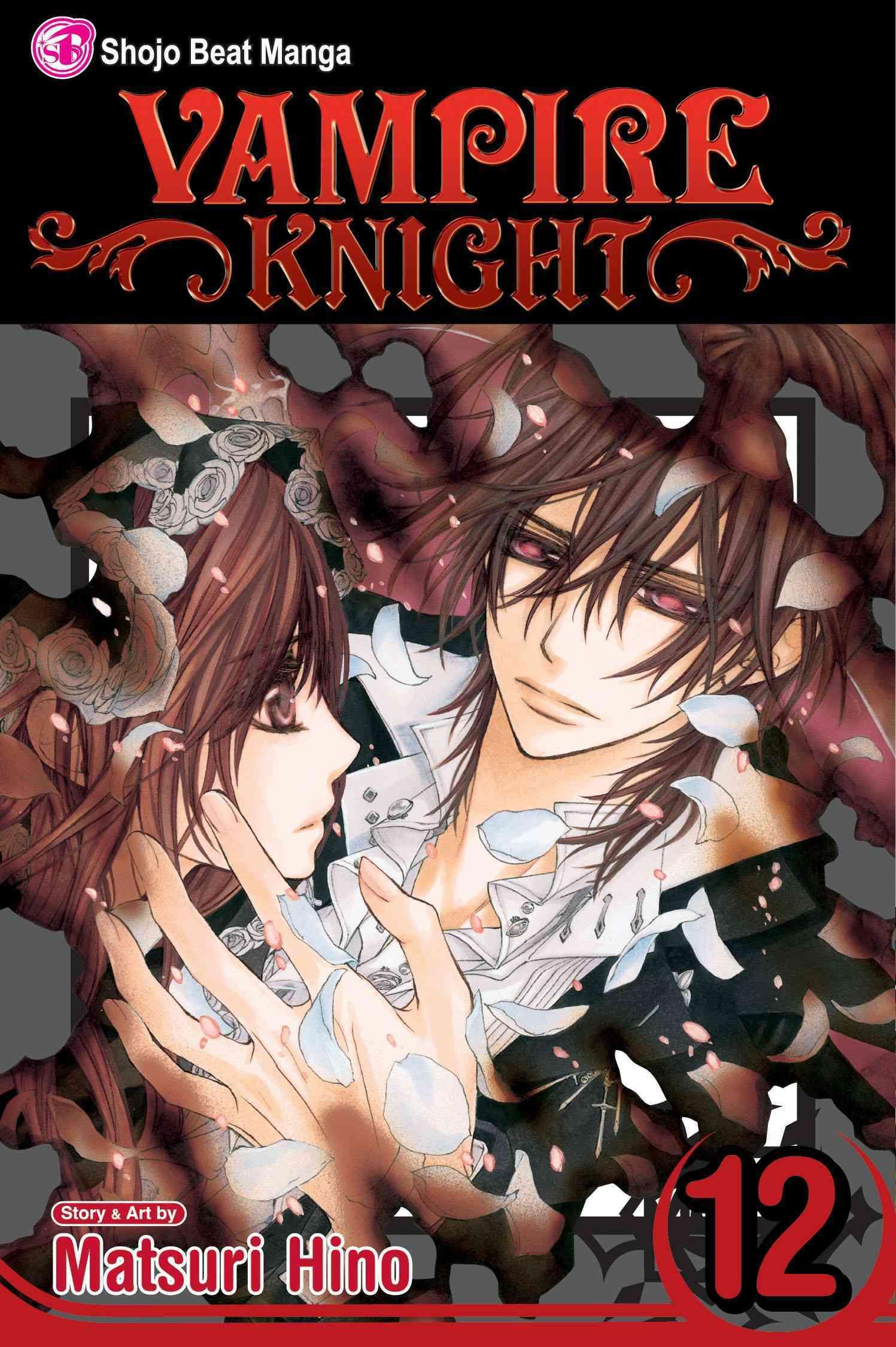 Vampire Knight 12 (Paperback)