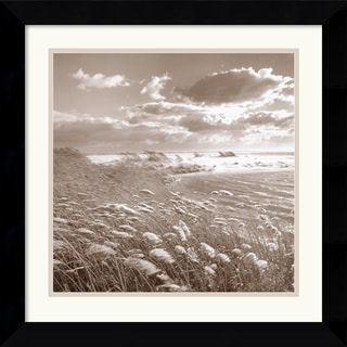 Michael Kahn 'Swan Pond' Framed Art Print