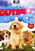 America's Cutest Dog (DVD)