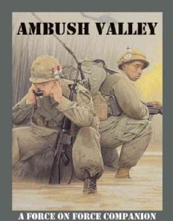 Ambush Valley: Vietnam 1965-75 (Paperback)