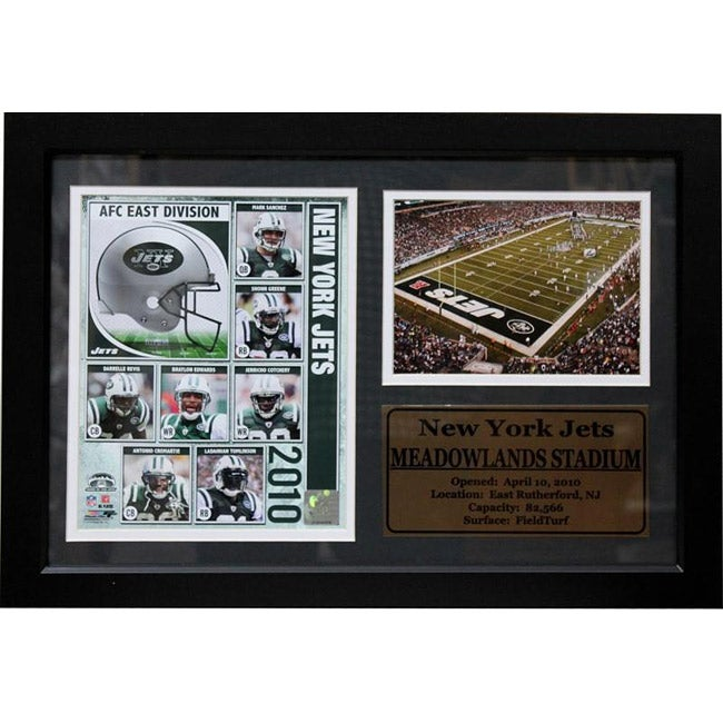 New York Jets Team and Stadium Photo Deluxe Frame