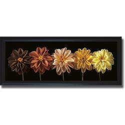 Assaf Frank 'Floral Salute' Framed Canvas Art