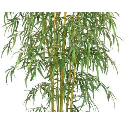 Laura Ashley Realistic Bamboo Tree