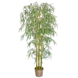Laura Ashley Realistic Bamboo Tree