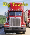 Big Trucks (Hardcover)