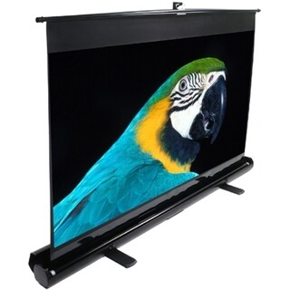 Elite Screens exFrame Manual Projection Screen