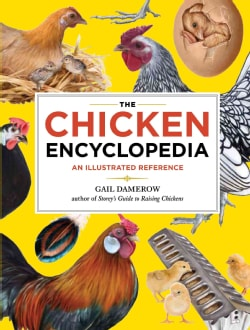 The Chicken Encyclopedia: An Illustrated Reference (Paperback)