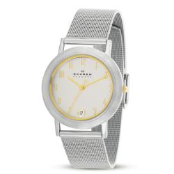 Skagen Men's Stainless Steel Dress Watch