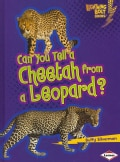 Can You Tell a Cheetah from a Leopard? (Hardcover)