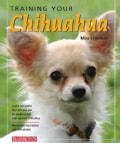 Training Your Chihuahua (Paperback)