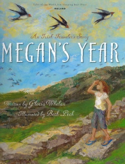 Megan's Year: An Irish Traveler's Story (Hardcover)