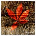 Miguel Paredes 'Red Leaves I' Canvas Art