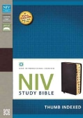 Niv Study Bible: New International Version, Burgundy, Bonded Leather (Paperback)