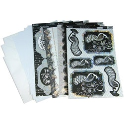 Birds Of Paradise 'Black Birds' 13-piece Luxury Card Making Kit