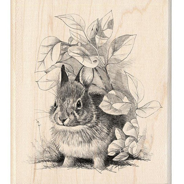 Inkadinkado Bunny Retreat Rubber Stamp