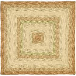 Safavieh Handwoven Indoor/Outdoor Reversible Multicolor Braided Area Rug (8' Square)