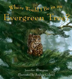 Where Would I Be in an Evergreen Tree? (Paperback)
