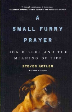 A Small Furry Prayer: Dog Rescue and the Meaning of Life (Paperback)