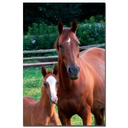 Kurt Shaffer 'Mother and Dauther' Canvas Art