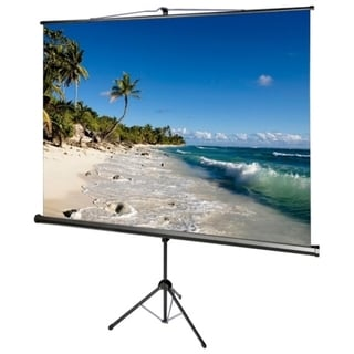 "AccuScreens Manual Projection Screen - 136"" - 1:1"