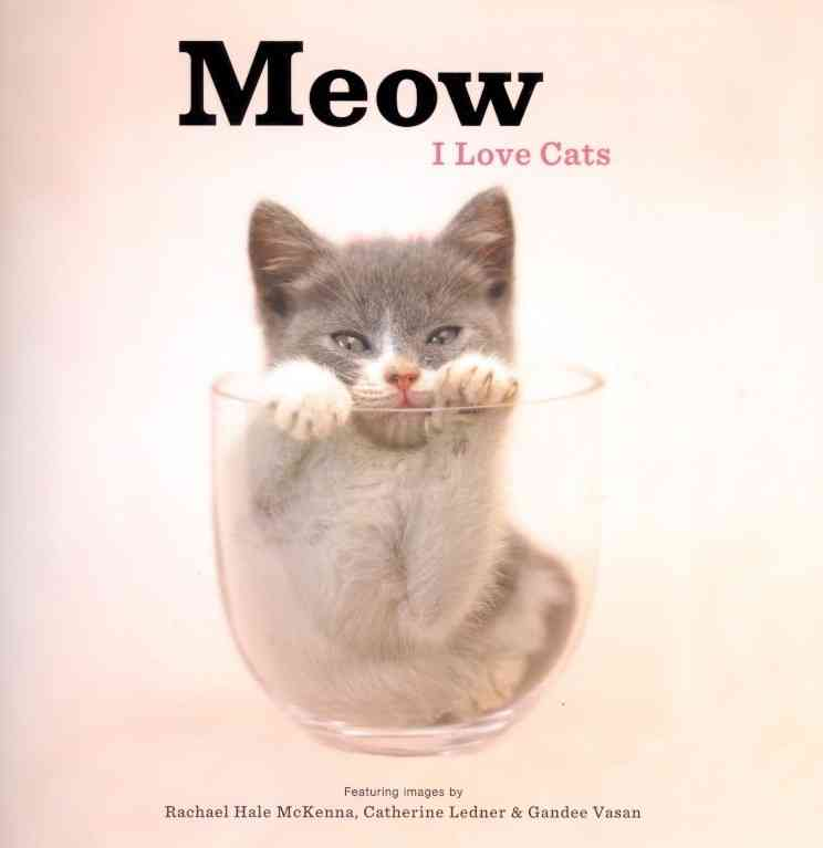 Meow: I Love Cats (Hardcover)