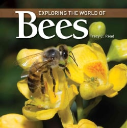 Exploring the World of Bees (Hardcover)