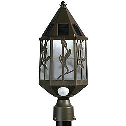Outdoor 2-light Bronze Light Post Head