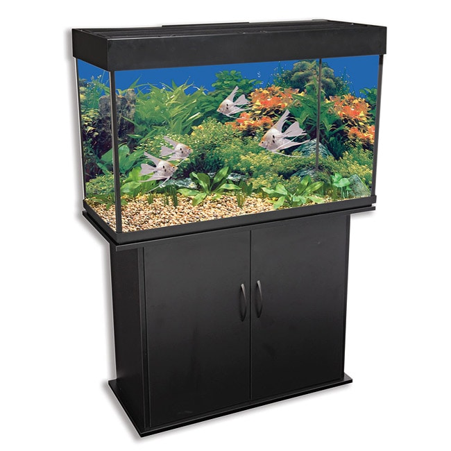 ... -Black-46-Gallon-Water-New-Glass-Fish-Tank-And-Level-Aquarium-Stand
