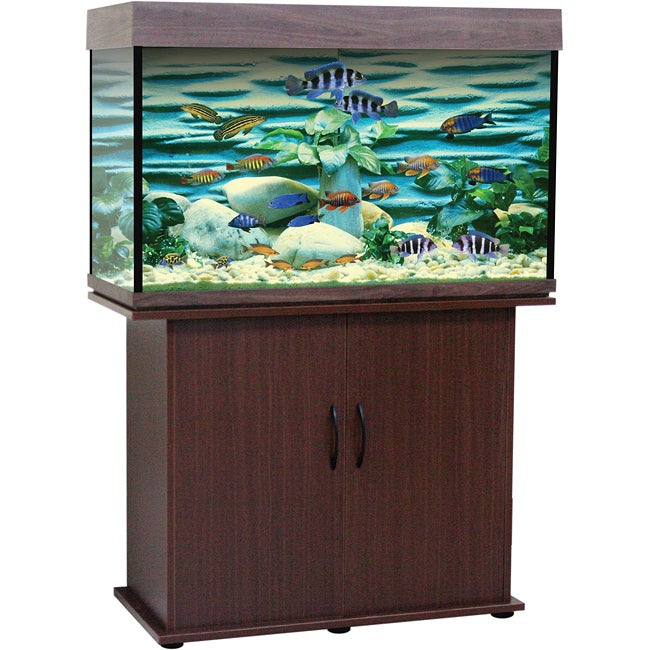 Delta Queen 46-gallon Rectangular Aquarium and Stand
